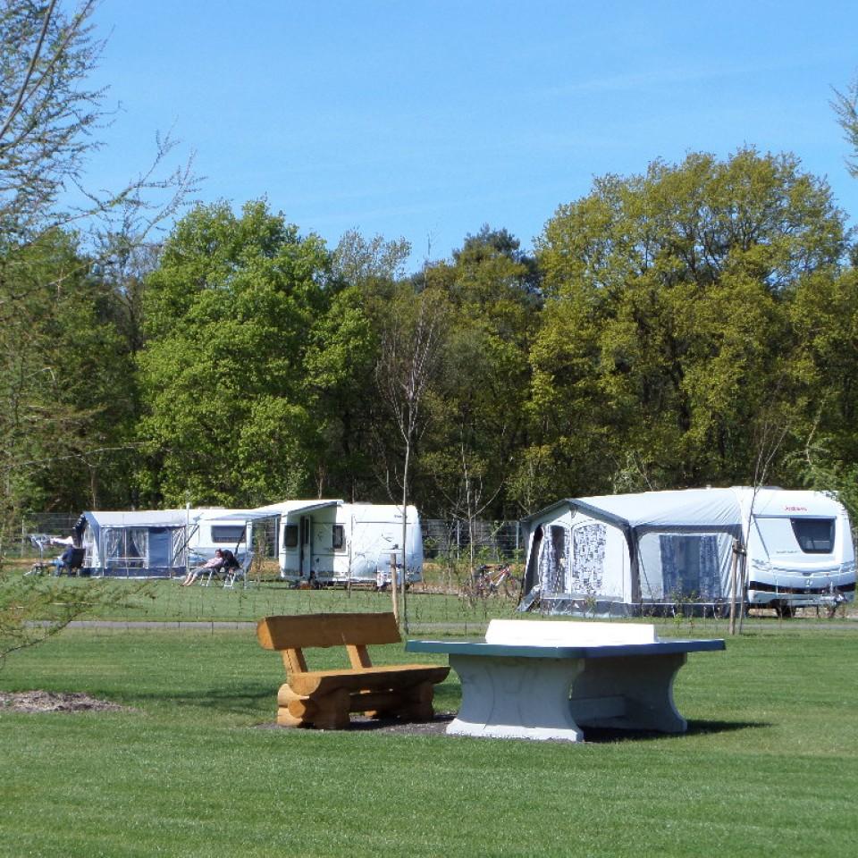 Camping Brabant met hond